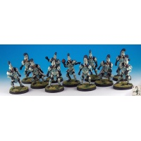 bloodbowl/figurines/humanteamlr